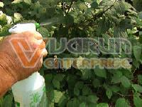 Agricultural Fungicides