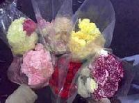 Carnation Flowers - Manufacturer, Exporters and Wholesale Suppliers,  Maharashtra - Yesraj Agro Export Pvt. Ltd.