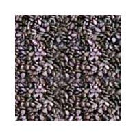 Sesame Seeds - 02