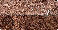 Coconut Coir Dust