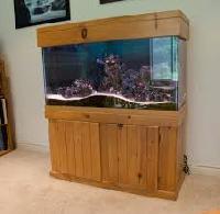 Wooden Fish Aquarium