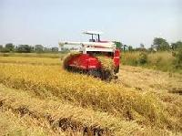Paddy Combine Harvester