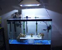 Aquarium Equipments