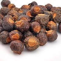Aritha Seeds