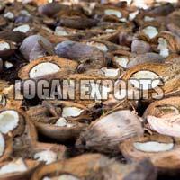 Coconut Copra 2