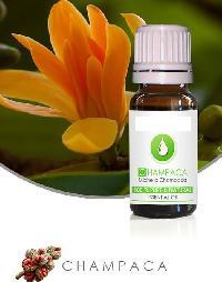 CHAMPACA ESSENTIAL OIL Magnolia champaca