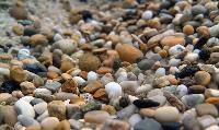 Aquarium Gravel Stones