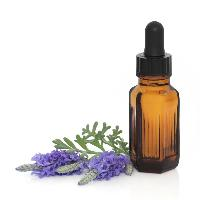 Lavender Essential Oil - 12 Ml- Kama Ayuerveda