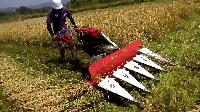 Agricultures Cutting Machine
