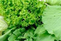 Leaf Vegetables