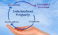 Ipr Investigation Services