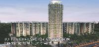Buy Apartment In Tulip Violet Gurgaon