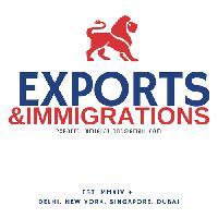 International Business Consultancy