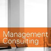 Management Consultation Services