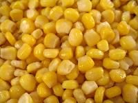 Frozen Yellow Corn
