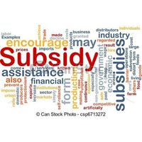 Capital Subsidy Services