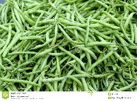 Beans French