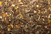 Horse Cattle Feed