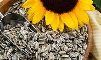 Sunflower Kernels
