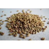 Bishops Seeds