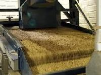 Coffee Seed Processing Machinery