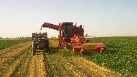 Harvesting Equipments