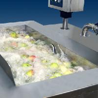 Vegetable Washing Machine