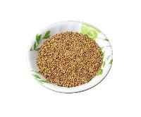 Natural Herbs High Quality Alfalfa Lucerne Seeds Bulk 1 Kg..