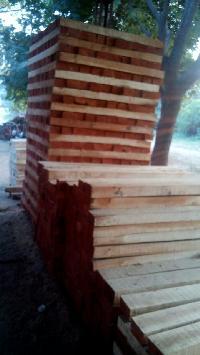 Neem Wood Logs