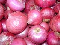 natural fresh onion
