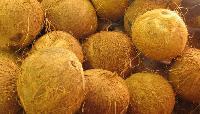 Semi Husked Coconut