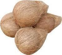 Coconut Semi Husk