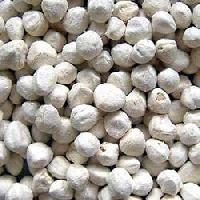 Moringa Seed Kernel