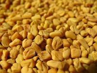 Fanugreek Seeds