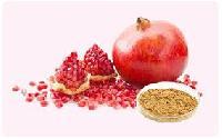 Pomegranate Extract Powder