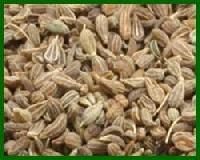 Anish Seed