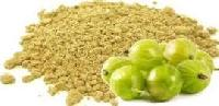 Dried Amla Powder
