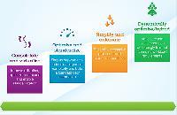 Business Process Optimization Services