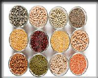Grains Pulses
