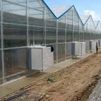 Polygal Triple Clear For Green Houses