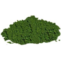 Dried Spinach Powder