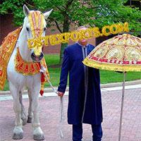 Wedding Horse Costume Set