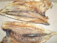 Dry Shark Fish