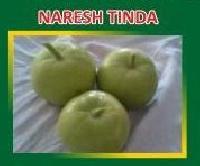 Hybrid Tinda Seeds