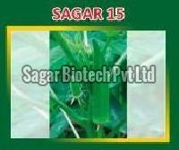 Sagar-15 Hybrid Lady Finger Seeds