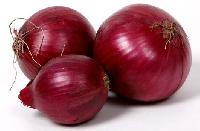 Red Onion Seeds
