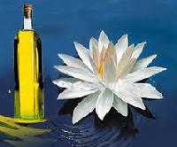 Lotus Attar