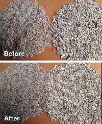 Grain Sorting Services