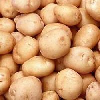 Laukar Potato
