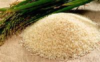 Karnataka Rice